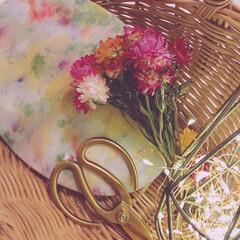 花びら染め/地球からの贈り物/フードロス/ハーバル染め/フォロー大歓迎/ハンドメイド レストランの食品廃材をハーバル染め作品に…