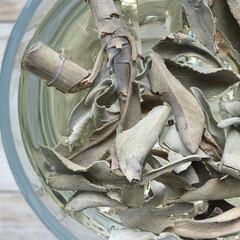 ハーバル染め/ハーブ/草木染め/天然染め/ホワイトセージ ホワイトセージ&クリスタル水で、蒸しあげ…