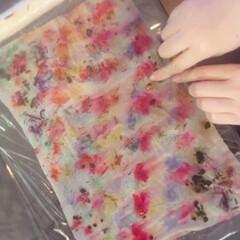 ハーバル染め/草木染め/花びら染め/天然染め/講座/ワークショップ 植物たちが織り成す色を、豊かに味わうハー…