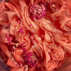 植物/花びら染め/草木染め/ハーバル染め/ハーブ エナジーカラー。 植物の色は懐が深い。 …