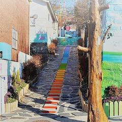 韓国/仁川/旅/童話村/パステルカラー 韓国旅行にて。仁川にある童話村のレインボ…