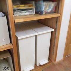 KEYUCA/ケユカ/ゴミ箱/ダストボックス/https://a.r10.to/... ダストボックス家具を処分して1年以上。 …
