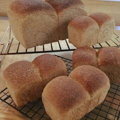 手作りパン/糖質制限/ふすまパン/おからパウダー/LIMIAごはんクラブ/わたしのごはん 数をこなすしか上達の道はないのだろうな。…