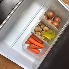 冷蔵庫の中/冷蔵庫/野菜室 野菜室仕分け開始!ピッタリ収納したーい
