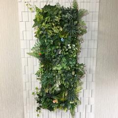 フェイクグリーン/エコカラット/春のフォト投稿キャンペーン/令和の一枚 玄関壁にプチ装飾💕 エコカラットという消…