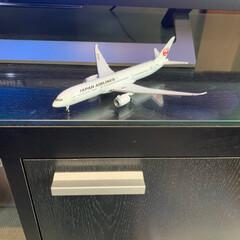 ディアゴスティニ/花壇のお花/JAL旅客機コレクション ディアゴスティニJAL旅客機コレクション…