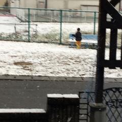 雪景色 何年かぶりの大雪☃️☃️☃️ こちらはほ…(2枚目)