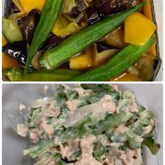 自家製ナスとゴーヤ/2日連続好評おかず/ゴーヤサラダ/ナスとオクラの煮浸し ナスとオクラの煮浸し&ゴーヤサラダ💕  …