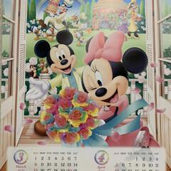 隠れミッキーカレンダー/心穏やかに過ごせますように 隠れミッキーカレンダー💕 今日から3月、…