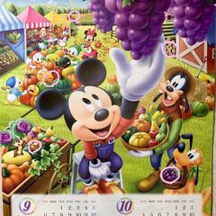 隠れミッキーカレンダー答え合わせ 隠れミッキーカレンダー答え合わせ💕 ピン…