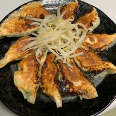 静岡旅行土産/手作り餃子/令和の一枚 手作り餃子💕 久しぶりに餃子作りました👍…