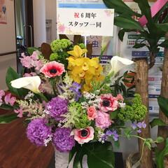 生花/6周年お祝い/フラワーアレンジ 開院お祝いのフラワーアレンジ💕 今日4月…