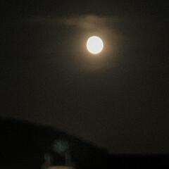 満月 今夜は満月💕 すごく大きくて綺麗に見えま…