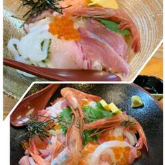市場/からいち/日本海/お出かけ/宝石丼/海鮮丼/... 海鮮丼&宝石丼💕 今日は祝日で、朝から少…(1枚目)