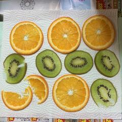 オレンジキーウィバージョン/イチゴ押しフルーツ失敗/押しフルーツ 押しフルーツ、オレンジキーウィバージョン…