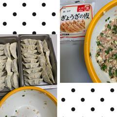 餃子ぴったり包めた/手作り焼き餃子 手作り焼き餃子💕 久しぶりに餃子作ってみ…(2枚目)