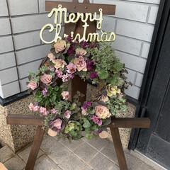 素敵なプレゼント/ハンギングバスケット/イーゼルスタンド/クリスマス飾り/葉牡丹とビオラのリース 葉牡丹とビオラのリース💕 職場クリニック…(1枚目)