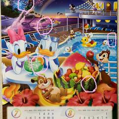 隠れミッキーカレンダー答え合わせ 隠れミッキーカレンダー答え合わせ💕 正解…