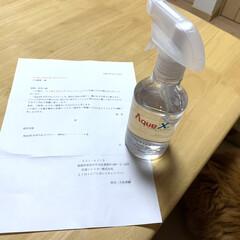 AquaX ペットのお手入れスプレー  | AquaX(アクアエックス)(その他ペット用品、生き物)を使ったクチコミ「こんばんは🌇  LIMIAモニターキャン…」