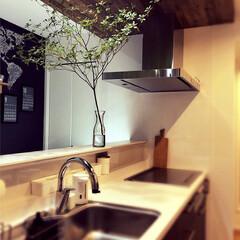下がり天井/黒板クロス/ドウダンツツジ/平屋/新築一戸建て/カウンターキッチン/... 使いやすいキッチンにこだわりました♡イン…