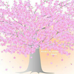 癒し/暖かい/春/お絵描き/イラスト/植物/... 桜満開。。。Wordのオートシェイプを使…