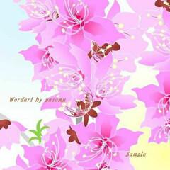 癒し/暖かい/桜/ピンク/インテリア/イラスト/... こんにちは。昨日は冷たい雨でしたが、今日…