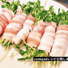 レシピ公開中/レンチン/夕飯/おうちごはん 今日の夕飯!豆苗豚バラ巻き