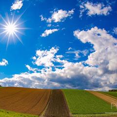 美瑛/北海道/アマチュアカメラマン/Nikon/写真/風景写真/... 秋晴れだった日の美瑛町です🌞
