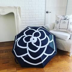 傘なくすの得意/傘/おすすめアイテム/令和の一枚/フォロー大歓迎/LIMIAファンクラブ/... 🌺 ・ 傘を失くしてしまうで 少しの雨で…