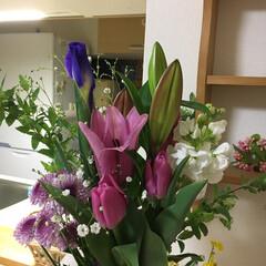 お供え/お花/ペット/犬 昔のお友達からお花のお供えを頂きました💐…