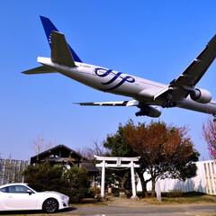 風景/旅 北風の時に撮影する成田スポットです。