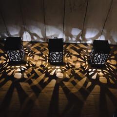 ライト/庭づくり/庭/影/100均/ソーラーガーデンライト/... ソーラーガーデンライト とっても影がキレ…(2枚目)