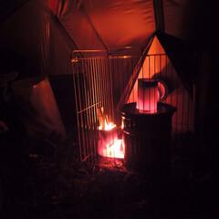 2018/冬/猫 冬のキャンプはストーブ必須