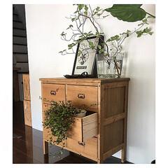 リノベーション/枝物/グリーン/DIY/雑貨/インテリア/... 玄関には、 グリーンを欠かさずに。 田舎…