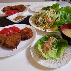 うちの定番料理 我が家の定番、納豆サラダです。亡くなった…