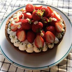 お家時間/cotta/イチゴタルト いちごの美味しい季節に! 今週は、いちご…(1枚目)