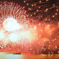TV/住まい 昨日TVのLive琵琶湖の花火大会を、パ…