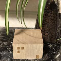 仕事/住まい/雑貨/暮らし/節約/100均 キャンドゥで買ったハウス形の木片 穴を開…