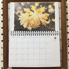 百均/リミなか/住まい/3月のカレンダー おはようございます☀ 山さんのフォトお借…(1枚目)