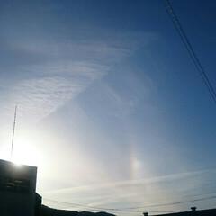 幻日だっけ?/夕日/虹/雲/空/春のフォト投稿キャンペーン/... 夕方のお散歩🐶 ☀の周りに虹色の輪っか🌈