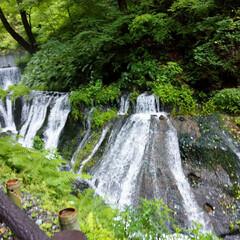 軽井沢/滝/ドライブ/令和の一枚/フォロー大歓迎/LIMIAファンクラブ/... 台風一過の日曜日。 静かな山奥の滝を見に…(1枚目)