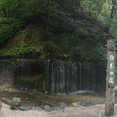 白糸の滝/軽井沢/滝/令和の一枚/フォロー大歓迎/LIMIAファンクラブ/... パノラマ写真にチャレンジ📷(1枚目)