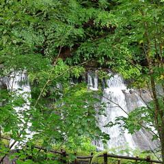 軽井沢/滝/ドライブ/令和の一枚/フォロー大歓迎/LIMIAファンクラブ/... 台風一過の日曜日。 静かな山奥の滝を見に…(3枚目)