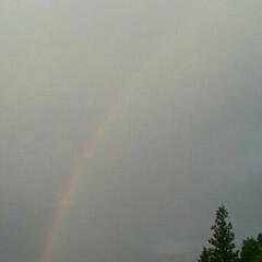 ツツジ/虹/雨/天気/雨季ウキフォト投稿キャンペーン/令和の一枚/... ☀てる~😆と思ったら雨が降ったり止んだり…