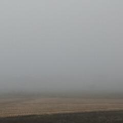 霧/天気予報/住まい/暮らし/フォロー大歓迎 濃霧注意報は外れてくれなかった🌁(1枚目)