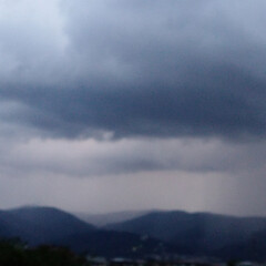 空をよむ/雷/散歩/空/犬派/令和の一枚/... あれは雨雲だ〰️☔雨が来るぞ~‼️ お散…(3枚目)
