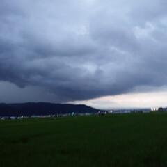 空をよむ/雷/散歩/空/犬派/令和の一枚/... あれは雨雲だ〰️☔雨が来るぞ~‼️ お散…
