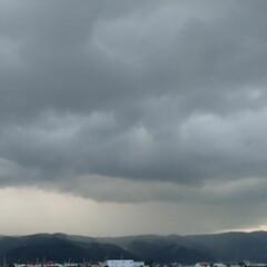 空をよむ/雷/散歩/空/犬派/令和の一枚/... あれは雨雲だ〰️☔雨が来るぞ~‼️ お散…(2枚目)