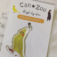 キーホルダー/キャンドゥ/オカメインコ Can★Zooのオカメインコ可愛い♡ 結…