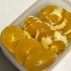 勿体無い/手作り/マーマレード/おうちごはんクラブ/グルメ オレンジって、簡単に剥いて食べたれないか…(4枚目)